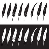 Vector group of feather on white background and black background — Stock Vector