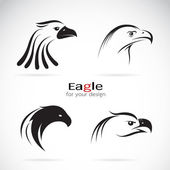 Vector group of eagle head design on white background. — Stock Vector
