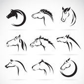 Vector group of horse head design on white background. — Wektor stockowy