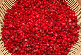 Cowberry in colander — Stock Photo