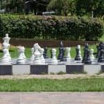 Big chess in a garden — Stock Photo #67988531