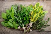 Bunch of fresh herbs wooden background. — Стоковое фото