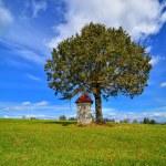Landscape with roadside shrine. Poland. — Stock Photo #55563421
