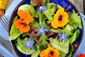 Salad with edible flowers nasturtium, borage. — Foto Stock