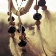 Wooden Dreamcatcher with feathers and beads — Stock Photo #58623657