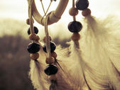 Wooden Dreamcatcher with feathers and beads — ストック写真