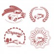Set of old fashion farming labels, badges and design elements — Stock Vector #60095423