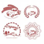 Set of old fashion farming labels, badges and design elements — Stock Vector