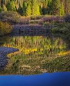 Reflection Below the Beaver Dam — Stockfoto
