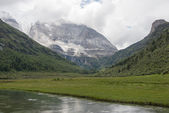SICHUAN, CHINA - JUL 24 2014: Yading Nature Reserve. a famous la — Stock Photo