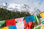 SICHUAN, CHINA - JUL 24 2014: Prayer flag at Yading Nature Reserve. a famous landscape in Daocheng, Sichuan, China. — Stock Photo