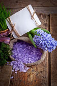 Hyacinths flowers with spa salt — Foto de Stock
