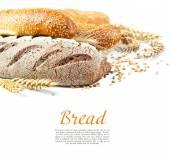 Verschillende soorten brood — Stockfoto