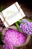 Fresh flowers hyacinths. — Stock Photo