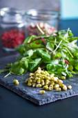 Mung bean sprouts on dark background — Stock Photo