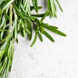 Bunch of fresh rosemary — Stock Photo #67225405