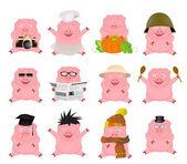 Nice set of cartoon pigs — Stock Vector