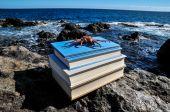 Crabe orange sur livres bleus — Photo