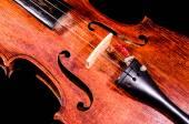 Classical shape wood vintage violin — Foto de Stock