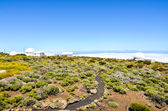 Telescopes of the Teide Astronomical Observatory — Stock Photo