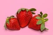 Fresa fresca madura — Foto de Stock