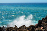 Strong Waves on the Blue Ocean — Stock fotografie