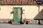 Gammal grön dörr — 图库照片