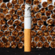 Tobacco Industry — Stock Photo #64092327