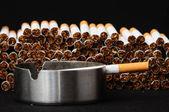 Indústria do tabaco — Fotografia Stock