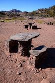 Picnic Recreational Area — Stock Photo