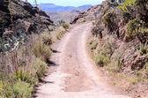 Desert Road — Stock Photo