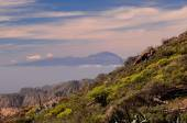 View of El Teide Volcan in Tenerife — Stock Photo