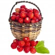 Wild Strawberries — Stock Photo #52433389