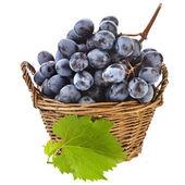Ripe grape bunch in basket — Stock Photo
