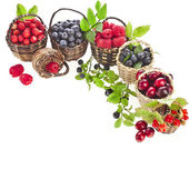 Forest berries in wicker baskets — Stock Photo