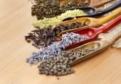 Assortment of dry tea — Stock Photo