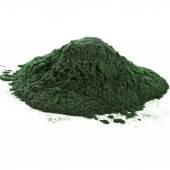 Spirulina powder algae — Stock Photo