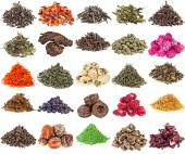 Collection of Tea — Stock Photo