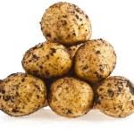 Ripe potatoes — Stock Photo #58791351