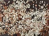 Varieties of whole grain rice — Stock Photo