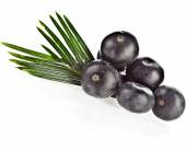 Fresh acai fruit with palm leaves — Foto Stock