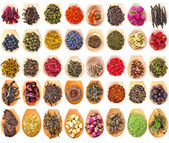 Tea Leaves and Fruit Berry Flower Additives — Stockfoto