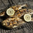 Grilled Sea bass and Dorado fish — Stock Photo #60353057