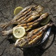 Grilled Sea bass and Dorado fish — Stock Photo #60354055