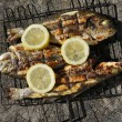 Grilled Sea bass and Dorado fish — Stock Photo #60354195