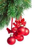 Fir tree decoration — Stock Photo