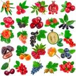 Set of fresh ripe fruits and berries — Stock Photo #75656485