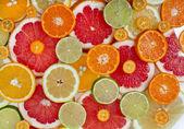 Colorful slices citrus texture — Stock Photo