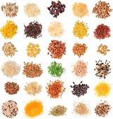 Collection Cereal Grains and Seeds — Stock Photo