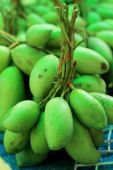 Fruit mango in the market — Stockfoto
